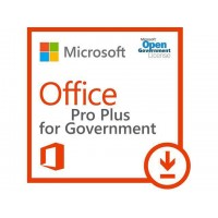 Microsoft  Office Pro Plus 2019 ENG OLP A Goverment