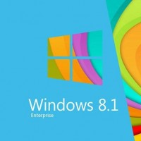 Windows 8.1 Enterprise - License 32 & 64 bit OEM license